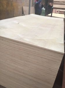 1220*2440mm High Quality Poplar Core Commercial Plywood pictures & photos