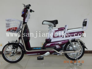 Using Western Technology 48V Electric Bike with En15194 Certification E-Bicycle (SJEBCTB-026)
