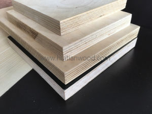 High Quanlity 100% Natural Birch Plywood for Furniture