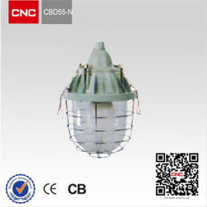 Explosion Proof Light (CBD55) pictures & photos