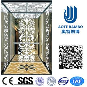 Professional Passenger Elevator with German Technology (RLS-248)