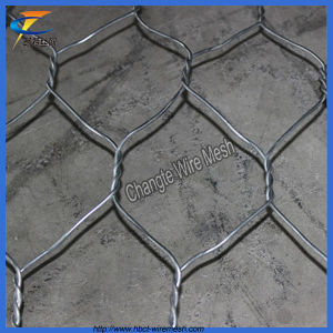 High Quality Low Carbon Steel Wire Gabion Mesh pictures & photos