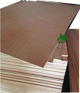 Hardwood Veneer Commercial Plywood for Furniture/Decoration with Low Price From Linyi