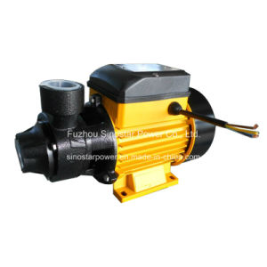 0.5HP 0.75HP 1HP Peripheral Water Pump (qb series) Manufacturer