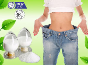 Orlistat Slimming and Fat Reduce Drugs Orlistat