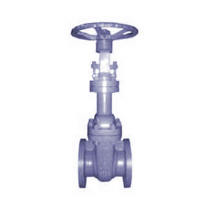 API Bellows Seal Gate Valve (WZ41H)