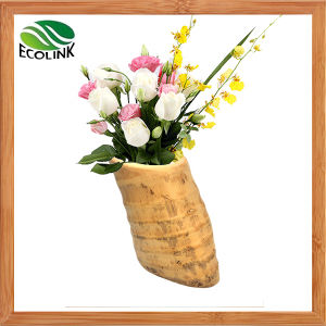 Natural Bamboo Root Flower Vase for Home Decoration pictures & photos