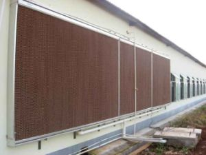 Honey-Comb Air Cooler Parts Greenhouse/Poultry/Husbandry Cooling Pad pictures & photos