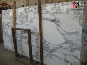 Arabescato Corchia White Marble Slab for Wall Cladding/ Flooring Tile/Building Material