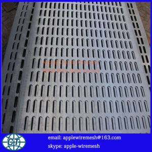 Long Hole Perforated Metal Panel pictures & photos