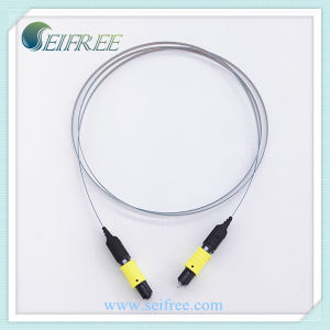 MPO 12-Ribbon Optical Fiber Patch Cord, Multi-Mode Jumper Cable pictures & photos
