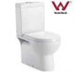 Sanitary Ware Toilet (wds99)