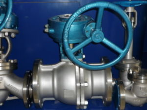 "Class150 10"" Worm Operated Ball Valve pictures & photos"