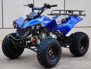 Sales Promotion Cheap Mini Quads pictures & photos