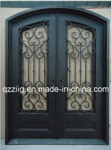 Popular Design Iron Enterior Door (ZY-IR086)