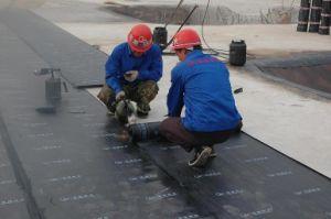 Waterproof Membrane/Bitumen Waterproof Membrane/Roof Waterproof Membrane