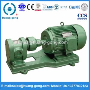 2cy Lubricating Oil Gear Pump Foredible Oil pictures & photos