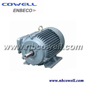 Y Series 50 HP Electric Motor