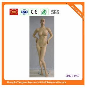 High Quality Mannequins with Good Price 07308
