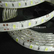 RGB SMD5630 IP65/68 120 LEDs/M LED Flexible Stripe Light for Outdoor Decoration pictures & photos