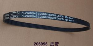 Cummins V Ribbed Belt (206996) for Ccec Engine Part pictures & photos