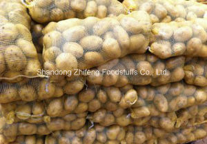 High Quality New Crop Potato pictures & photos