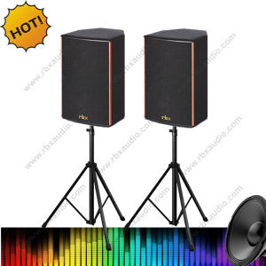 Rt-6130 2-Way Wall Mount Speaker for Conference
