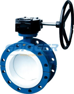 Flanged End Gear Operated Butterfly Valve (DG024)