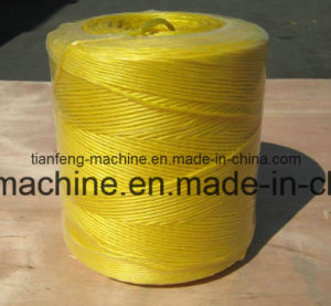 PP Synthetic String Twine Making Plant pictures & photos