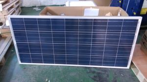 High Quality Poly 130W Solar Panel to Pakistan pictures & photos