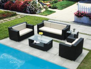 Garden Wicker Rattan Sofa Set (BZ-SF008)