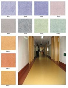PVC Flooring for School, Hospital, School pictures & photos