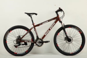 Most Popular Bicycles Mountain Bike (FP-MTB-A007) pictures & photos