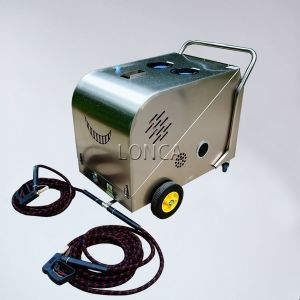 1 5kw 220v Diesel Commercial Steam Cleaner B Model Steam Cleaning Machine