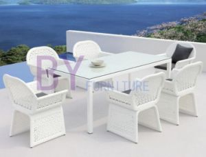 White Garden PE Rattan Furniture with Rectangle Glass Top Table