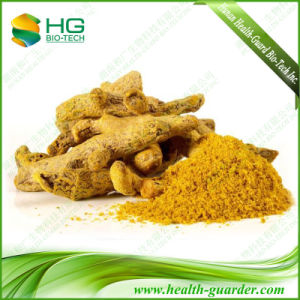 Natural Colorant Turmeric Powder Curcumin Turmerone Turmeric Extract