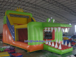 Commercial Inflatable Products for Party Decoration (B089)