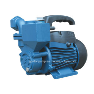 Wzb Single Phase Surface Self Priming Booster Agricultural Jet Water Pump