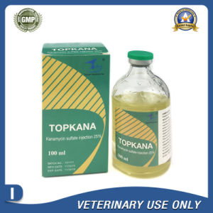 Veterinary Drugs of 25% Kanamycin sulfate Injection (50ml/100ml) pictures & photos