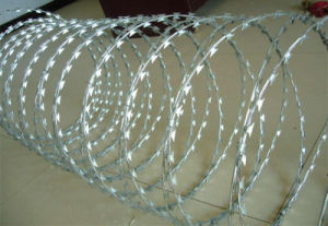 High Quality Galvanized Bright Surface Razor Barbed Wire pictures & photos