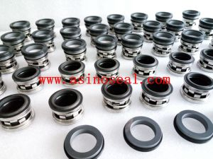 Elastomer Bellow Mechanical Seal as-E210 Replace Johncrane 2100