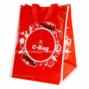 Custom PP Woven Shopping Bag OEM Are Weclome pictures & photos