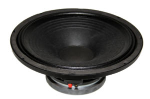 Factroy Price with Great Quanlity About 15inch 450W PA Speaker pictures & photos