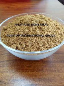 Meat and Bone Meal From China Manufacture -High Quality