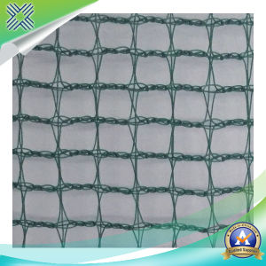 Customized Anti-Hail Net pictures & photos