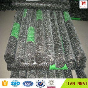 Factory Direct Chicken Mesh/ Hexagonal Wire Mesh