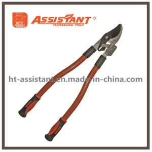 Compound Anvil Lopping Shears Horticultural Vine Loppers pictures & photos