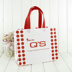 3D Nonwoven Bag with Customised Design Promitional Packing (MY-045)