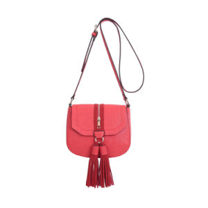 Fashionable Saddle Flap Tassel Red Crossbody Bag (MBNO042010) pictures & photos