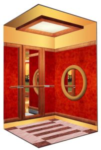 Luxurious Passenger Lift with Good Price (XNK-010) pictures & photos
